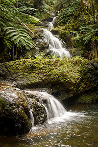 Waterfall in Hawaii Tropical Botanical Garden