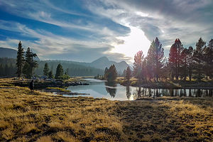 Lovely Tuolumne Meadows
