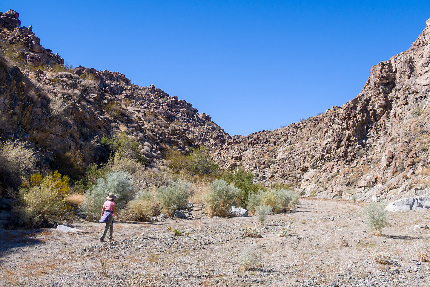 Hike to Picture Canyon
