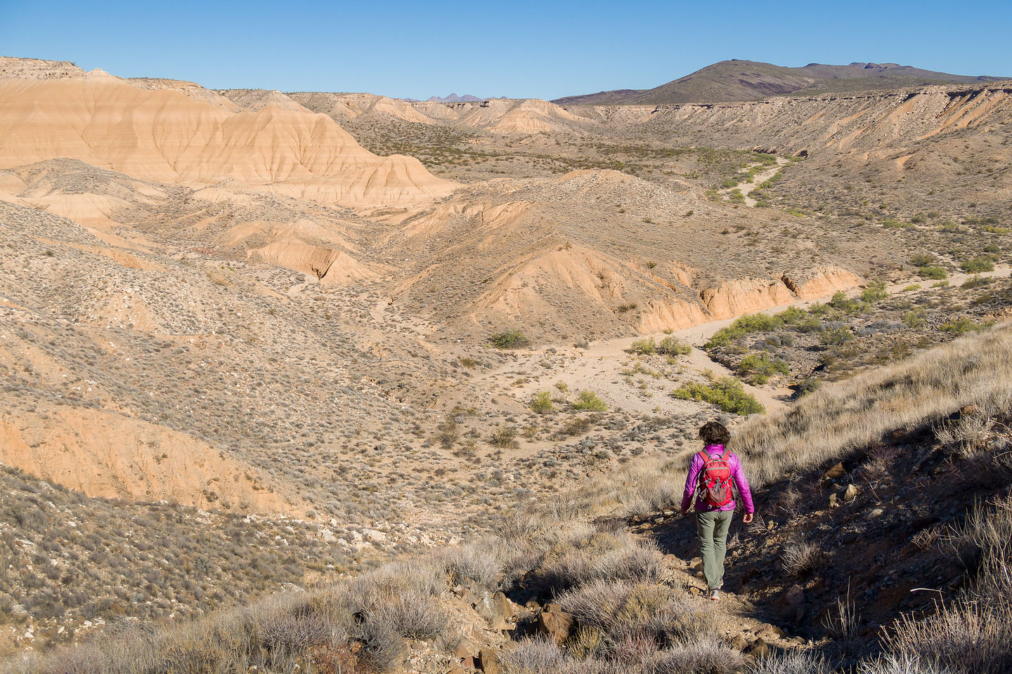Lolo hiking to Piute Spring