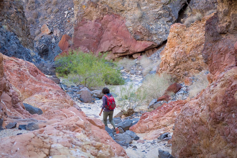 Hike down to Piute Springs