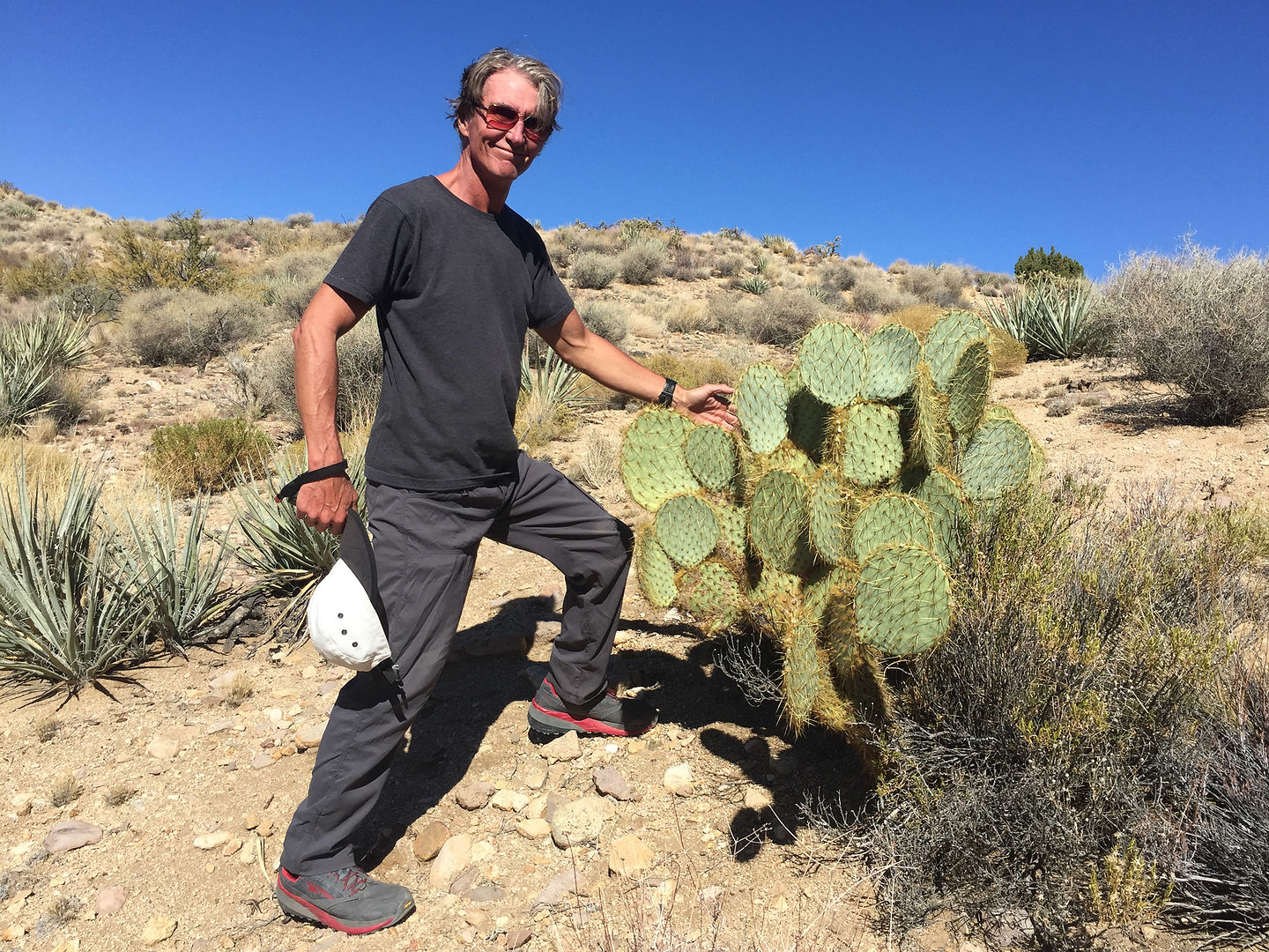 Herb making friends with the cacti on the Rock Spring Loop
