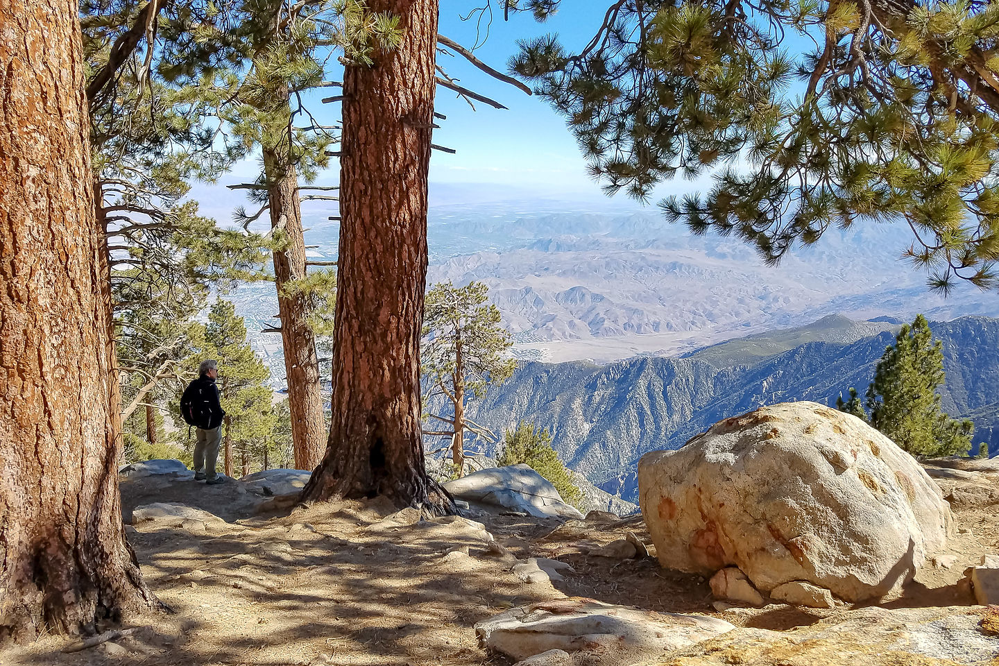 View from Desert View Trail