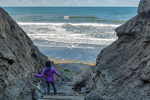 Trail down to Black's Beach