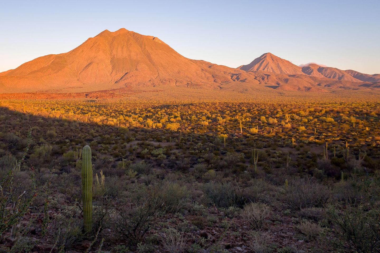 Morning light on Las Tres Virgenes