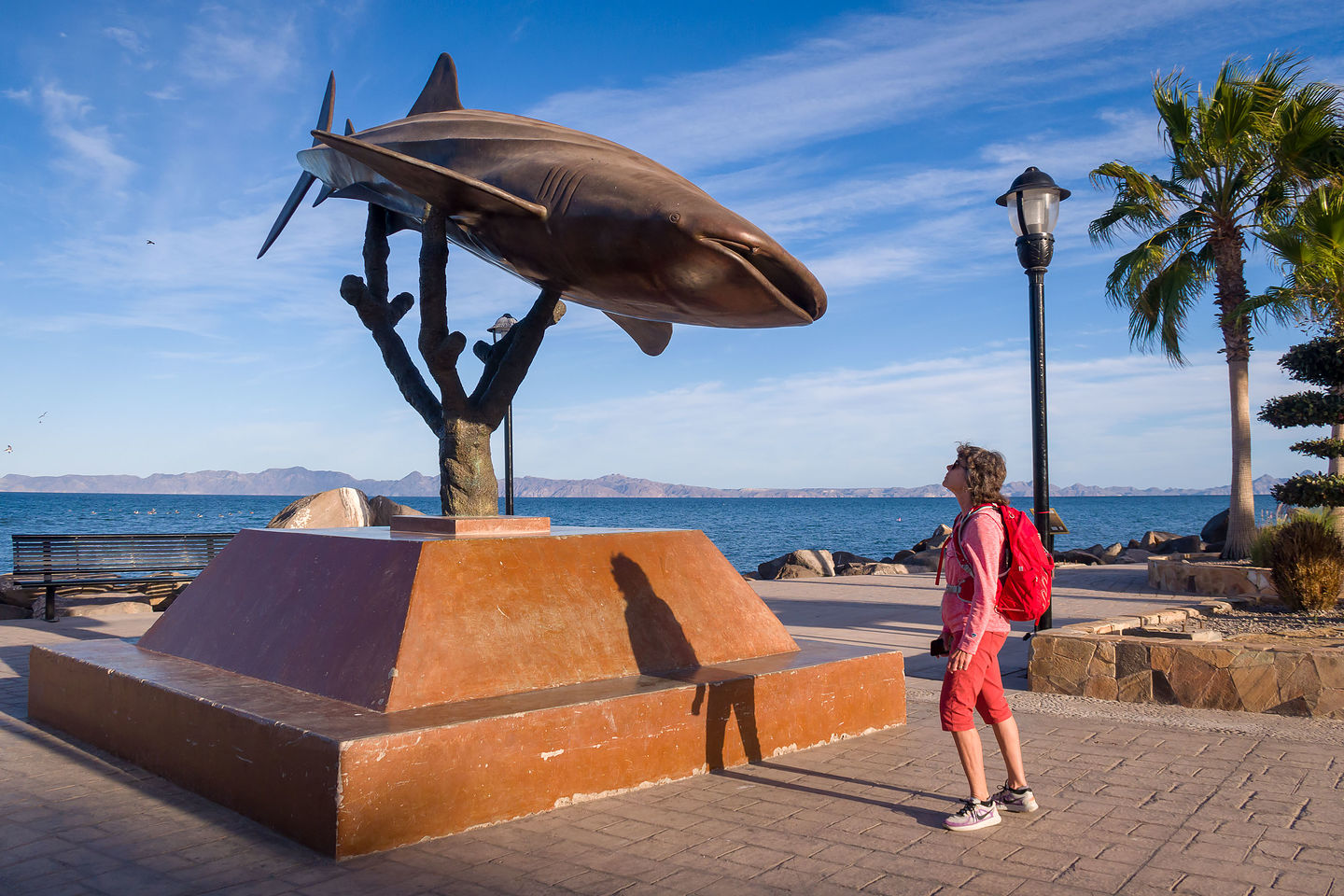 Lolo staring down a Whale Shark statue