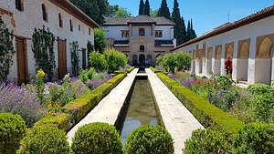 Generalife Gardens of the Alhambra