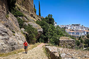 Herb wandering through Ronda's Old Town