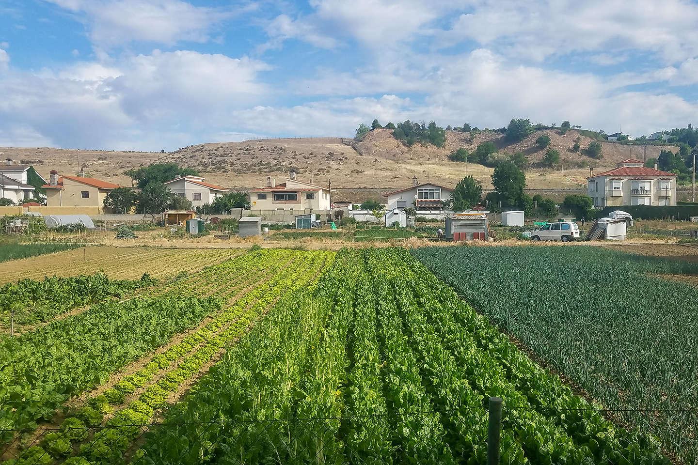 Walk through farm fields along the river path to Salamanca