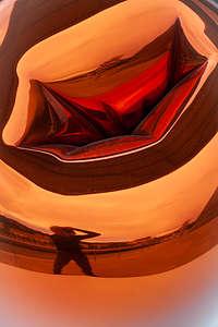 """Tulip"" reflections"