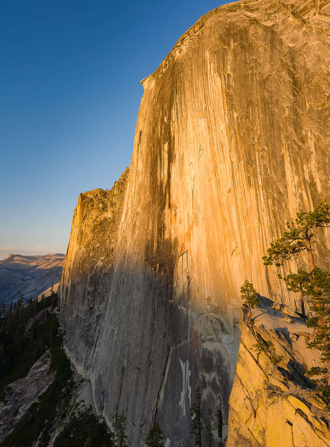 Late afternoon light on Half Dome from the Diving Board