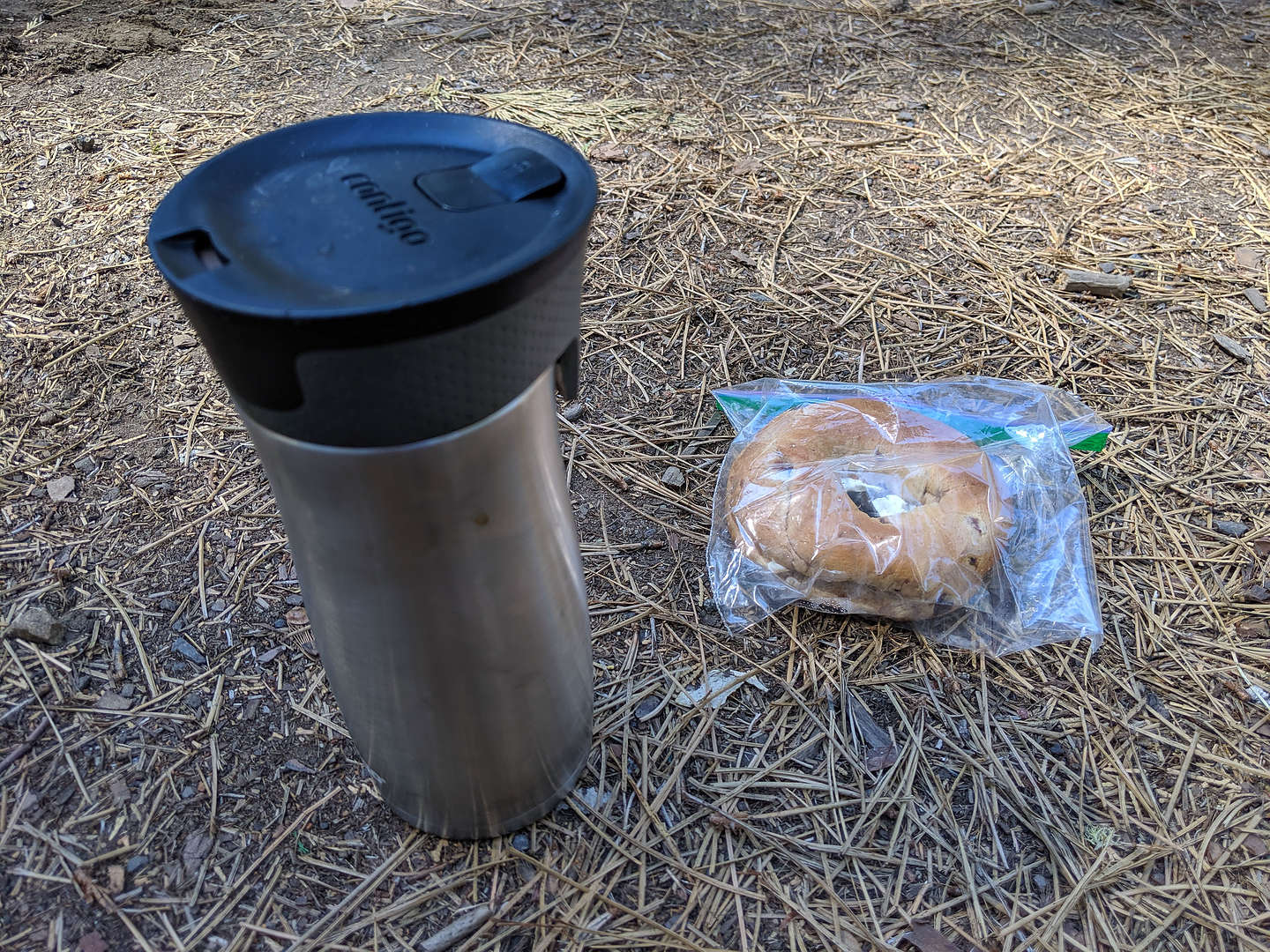 The bagel and coffee I tried to bring Herb before eating it myself