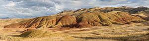 Along the drive through the Painted Hills