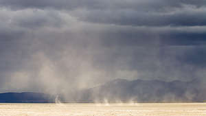 Dust devils forming on the playa