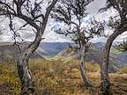 Indian Gorge Lookout along the Steens Mountain Scenic Byway
