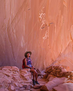 Lolo sitting beneath an anatomically correct pictograph