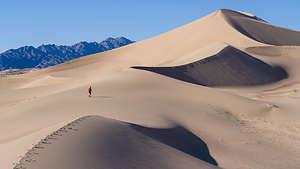 Ascending the Ibex Dunes