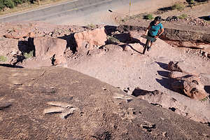 Poison Spider Mesa Dinosaur Tracks