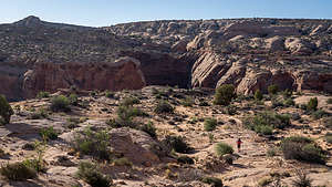 Hike down into Horseshoe Canyon to the Grand Gallery