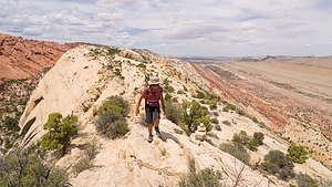 Along the ridge of the Waterpocket Fold