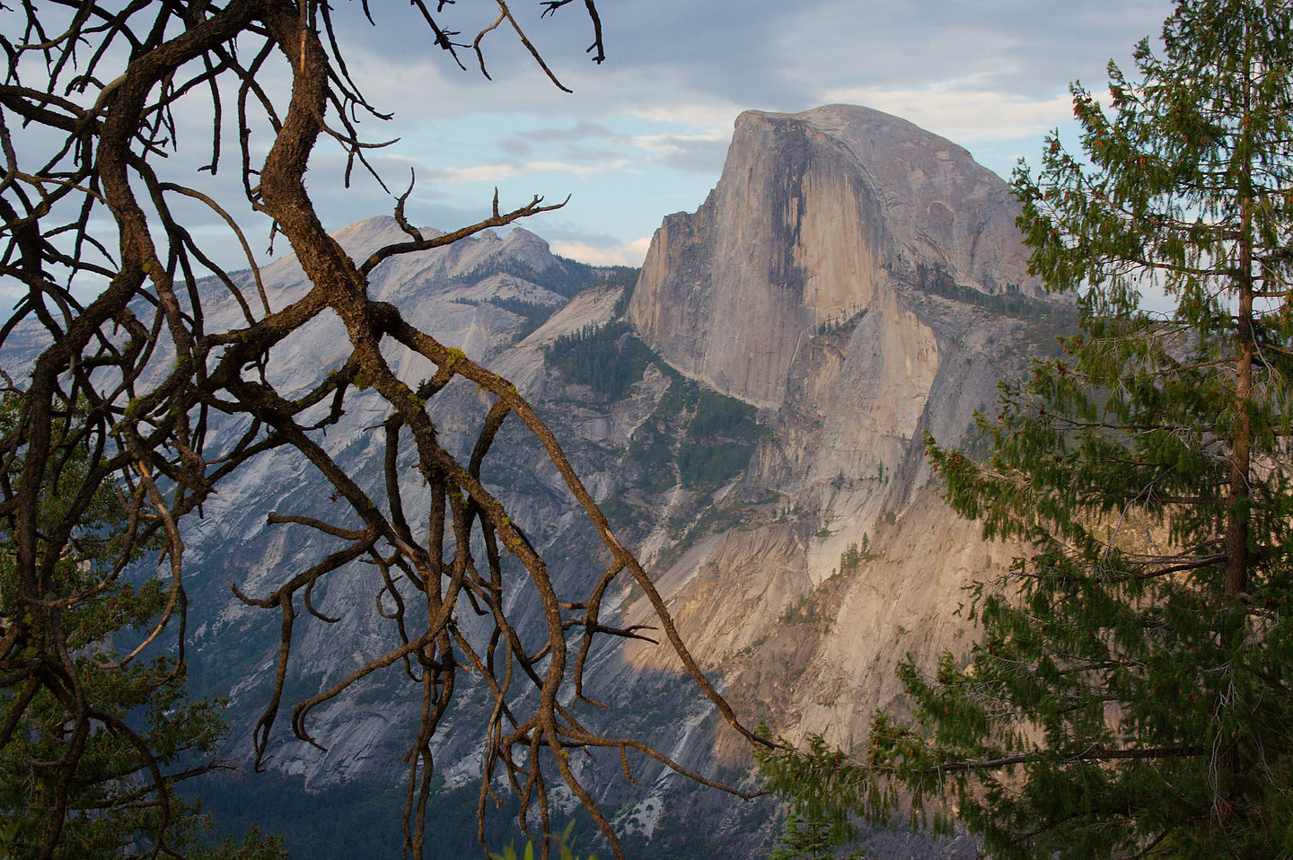 Half Dome from 4-mile trail - TJG