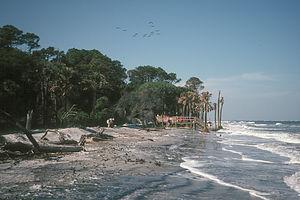 Hunting Island campground beach